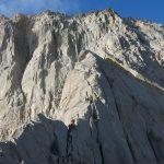 گرده آلمانها _ علم کوه