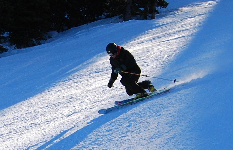 انواع اسکی