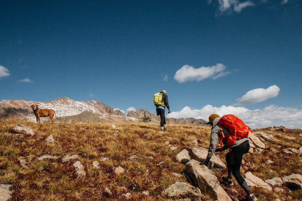 تفاوت کوهنوردی با کوهپیمایی