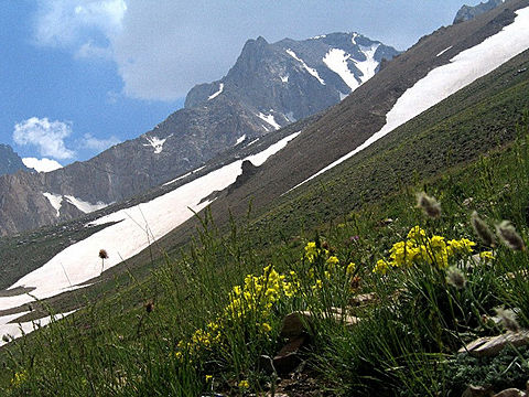 قله های مهم رشته کوه البرز
