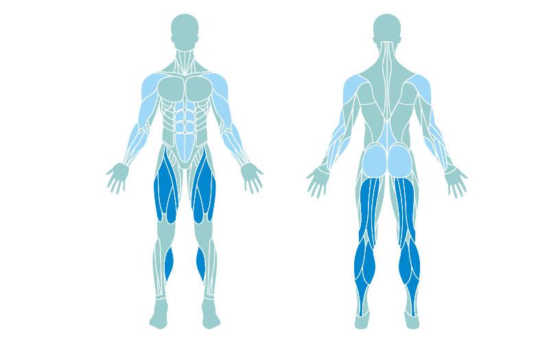 طناب زدن و عضله سازی