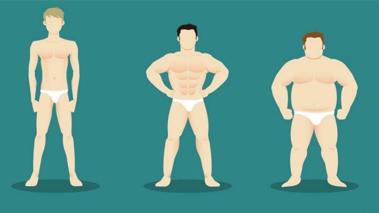 انواع ترکیب بدنی